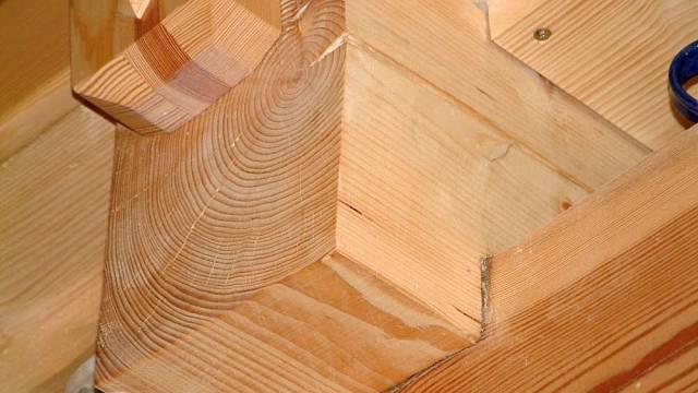 Odolnost dřeva II 2