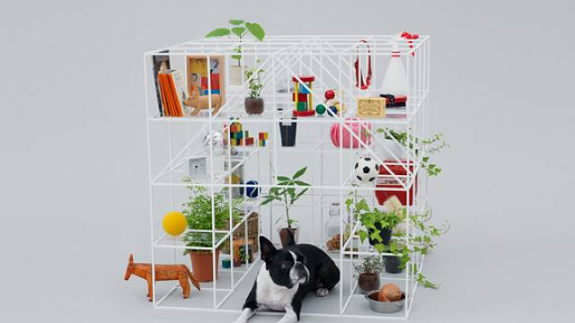 Architecture for Dogs 11