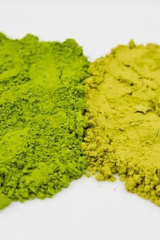 Matcha vs. green tea