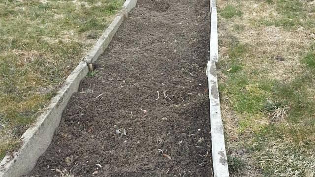 Základ pařníku a možná mého skleníku
