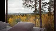 Foto: Treehotel
