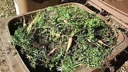 listí, tráva, plevel, zbytky ovoce, zeleniny, čajové sáčky, kávová sedlina, zbytky rostlin, piliny, dřevní štěpka z větví stromů a keřů, hlína z květináčů, spadané ovoce atd.