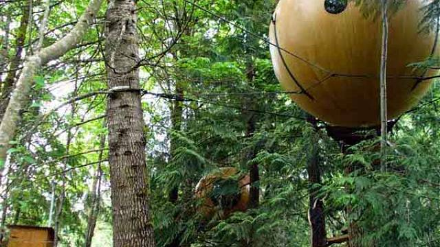 Domy na stromech 2