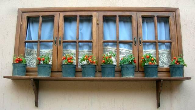 Zelenina v květináči