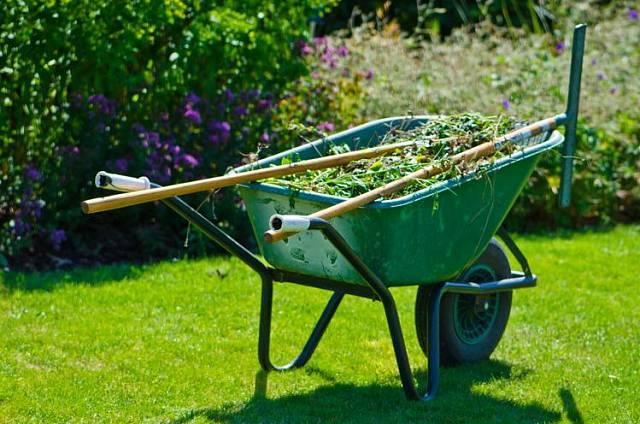 Rostlinné zbytky po prořezu stromů a keřů můžete zužitkovat pomocí drtiče větví.