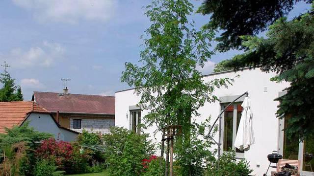 """Bylinky a jeřáb – Kvetoucí a voňavý ostrůvek nízkých bylinek u terasy, doplněný kvetoucími trvalkami a jedlým jeřábem (Sorbus aucuparia """"Edulis""""), se proměňuje po celý rok přímo před prosklenou stěnou obytného prostoru."""