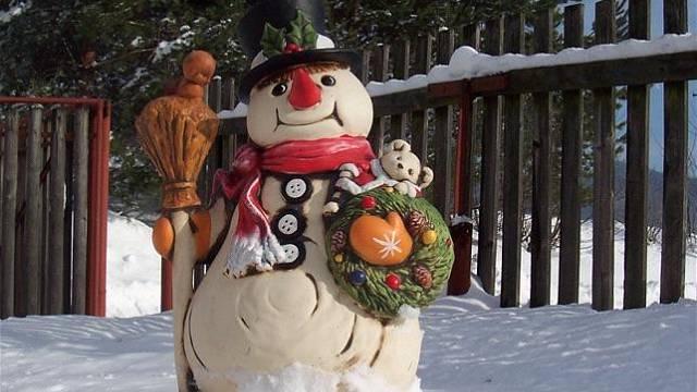 Mrazuodolné dekorace pro vaši zimní zahradu