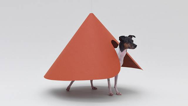 Architecture for Dogs 2
