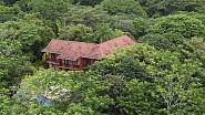 Džungle Mela Gibsona
