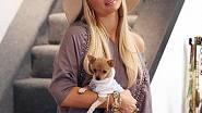 Paris Hilton s její oblíbenou čivavou