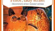 """Návody na halloweenské dekorace krok za krokem jsou ke stažení na [www.praktickazena.cz](http://www.praktickazena.cz/pdf.php """"www.praktickazena.cz"""")."""