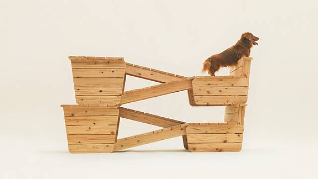 Architecture for Dogs 1