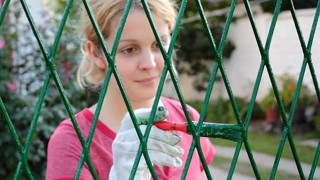 Natírání plotu