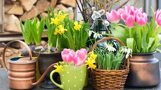 Jarní barvy povzbuzují optimismus.