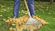Trávník na podzim potřebuje přípravu, aby překonal dlouhou zimu bez úhony.