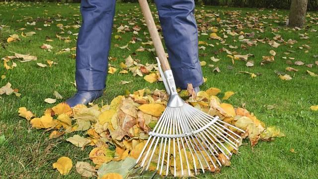 podzimni prace
