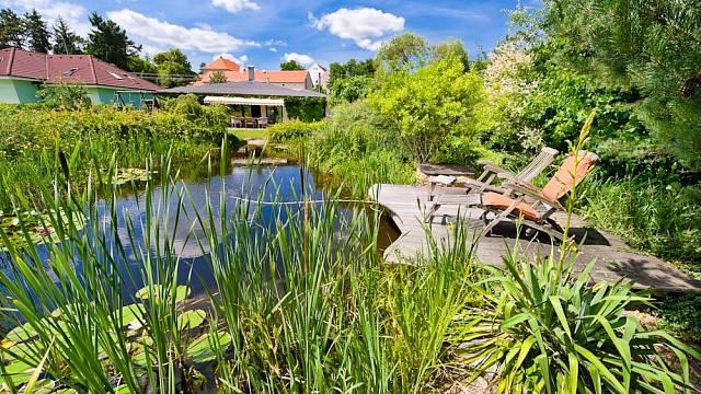 Místo původního bazénu bylo na zahradě vybudováno koupací jezírko.