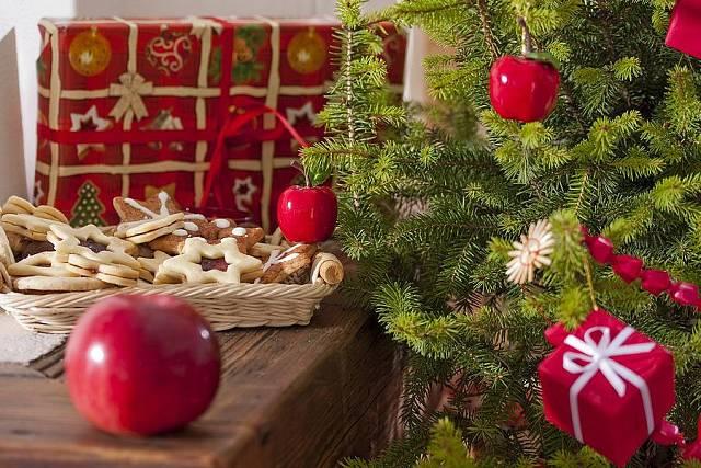 Živý stromek ozdobený jablíčky a balíčky