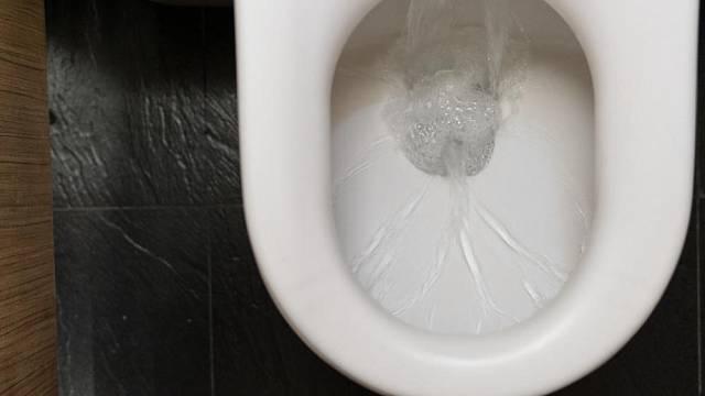 Historie toalet