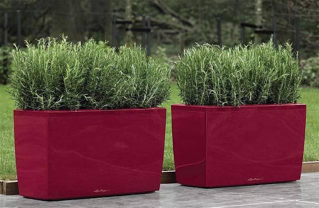 Velkoformátové květináče je možné použít jako dělící prvek.