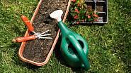 Pro vysazení rostlin používáme speciální substráty, kterých je na trhu dostatek. Některé rostliny totiž vyžadují určitou hodnotu půdní kyselosti, popřípadě jsou citlivé na výskyt některých prvků v půdě, jako je např. železo, bez kterého rostliny žloutn...