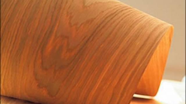 Dýha dřeva je 0,3-0,5 mm silná vrstva dřeva, která se nanáší k podkladu. Je měkká a navozuje pocit sounáležitosti s přírodou. Vhodná je tedy k výrobě reprezentativního nábytku, ke kterému se budeme chovat slušně.