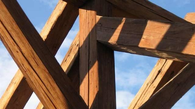 Odolnost dřeva I 6