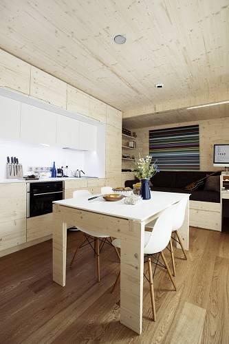 Dřevěný domek  10