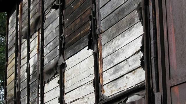 Odolnost dřeva I 4
