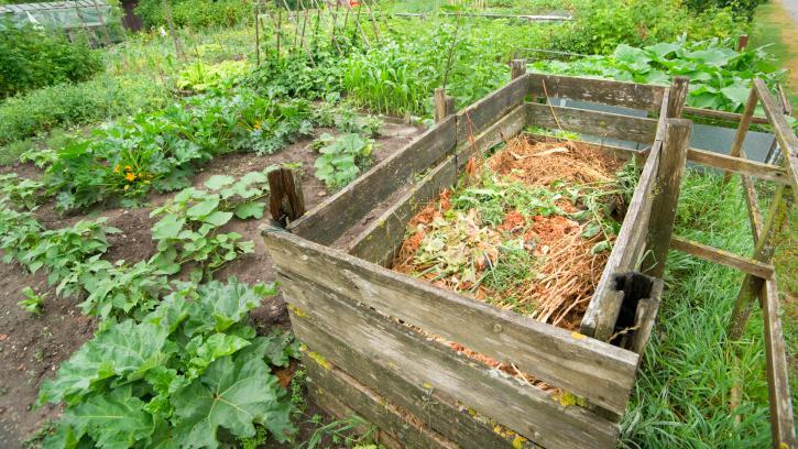 jak spr vn zalo it kompost d m a zahrada bydlen je hra. Black Bedroom Furniture Sets. Home Design Ideas
