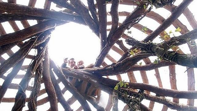 Kostru domu tvoří kmeny stromů.