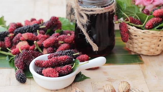 Morušový sirup či šťáva mají osvěžující chuť a spoustu vitaminů.