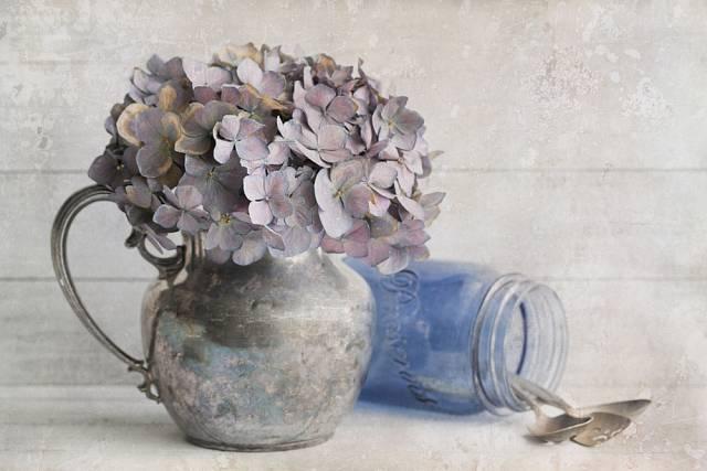 Uchovejte si krásu těchto nádherných květů i v sušené podobě.