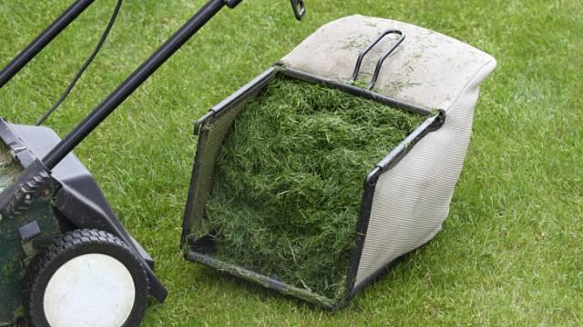 Co s posekanou trávou 1