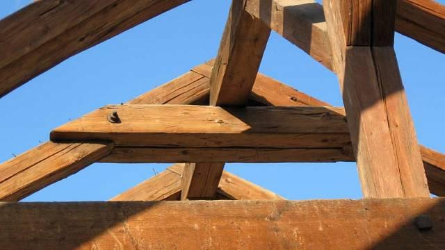 Odolnost dřeva II 6