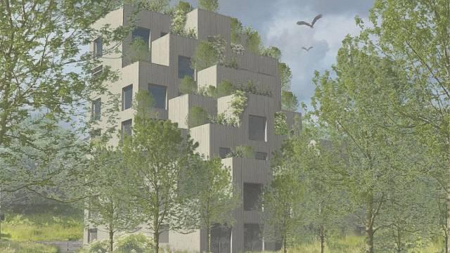 Vertikální zahrady, soutěžící Adéla Koubová; Vítěz odborné poroty v kategorii Dřevěné budovy – návrhy