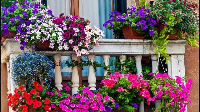 balkonovky