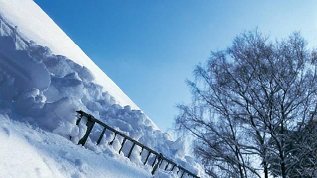 Mřížový sněholam