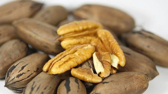 Pekanové ořechy 4