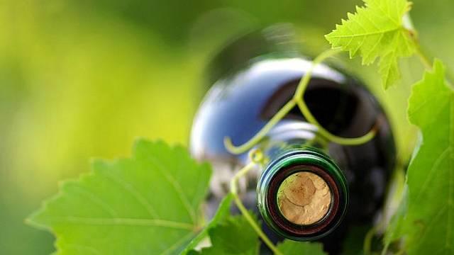 Ve víně je pravda.