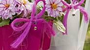 <p>Možná, že vaše kamarádka ještě jiřiny na zahrádce nemá. Zkuste ji tedy překvapit malým květinovým dárkem – jiřinkou v květináči. Ideální obal na takový dárek je plastová taštička, dozdobená sysalovou mašlí v barvě květů.</p> ...