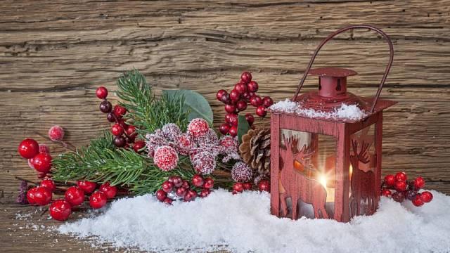 Vánoční výzdoba zahrady