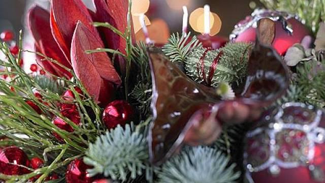 Hvězdník ve vánočních dekoracích působí luxusně.