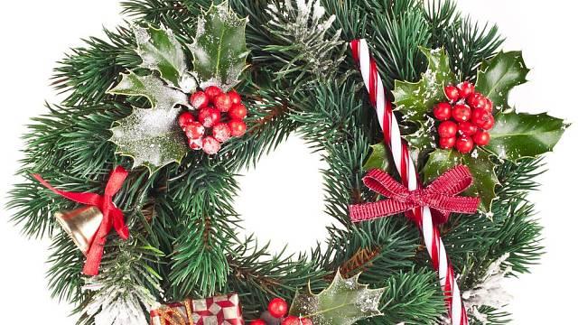 """Cesmína: """"Vánoční hvězda"""" Britů a Američanů si nachází cestu i k nám"""