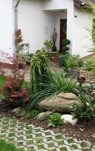 Zahrada plná květin - Vedle velkého kamene vypadají okrasný javor i modřín velmi dekorativně