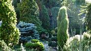 Kategorie Zahrada roku - finálová desítka 4