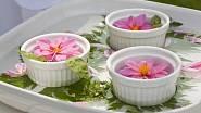 V horkých dnech je příjemné mít nablízku alespoň malou vodní hladinu. Udělejte si na váš stůl osvěžující jezírko v porcelánové misce. Listy kakostu zatěžkejte malými mističkami s jednotlivými květy jiřinek a doplňte plovoucími svíčkami. Vše zalijte vod...