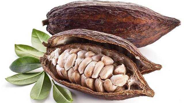 Takhle vypadá kakaový bob