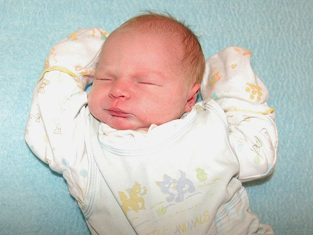 Lence a Tomáši Skokanovým z Travčic se 27.11. v 16:01 hodin narodil v Litoměřicích syn Tomáš Skokan (3,32 kg a 50 cm).