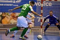 Futsal, Gardenline - Slavia
